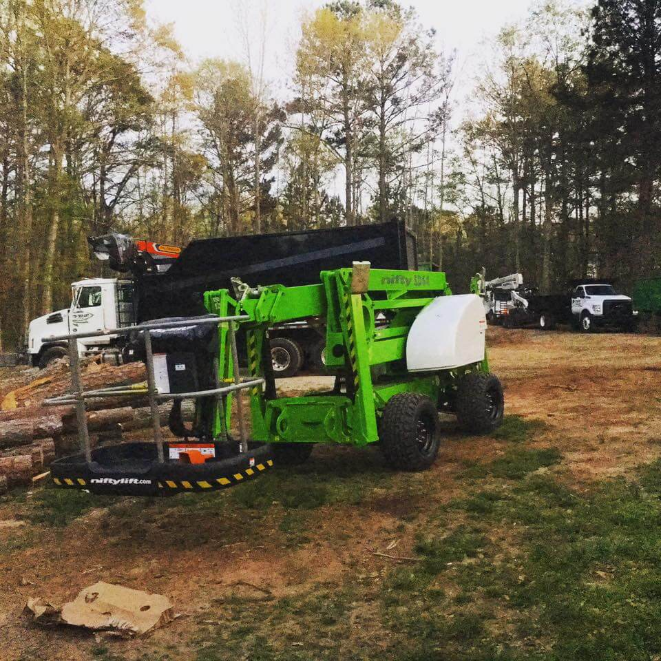 Tree Prunning & Cutting Service Fayetteville